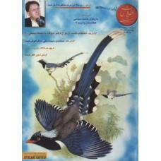 نسخه الکترونیک مجله اطلاعات هفتگی شماره 3016