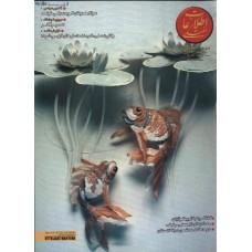 نسخه الکترونیک مجله اطلاعات هفتگی شماره 3019