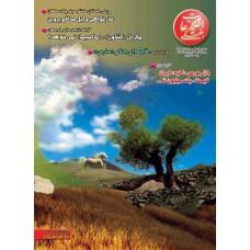 نسخه الکترونیک مجله اطلاعات هفتگی شماره 3089
