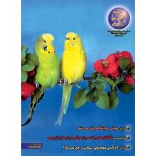 نسخه الکترونیک مجله اطلاعات هفتگی شماره 3090