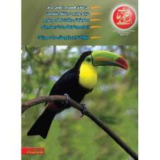 نسخه الکترونیک مجله اطلاعات هفتگی شماره 3093