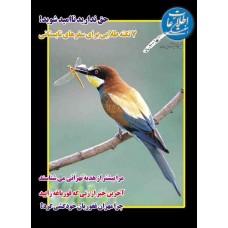 نسخه الکترونیک مجله اطلاعات هفتگی شماره 3145
