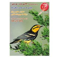نسخه الکترونیک مجله اطلاعات هفتگی شماره 3151