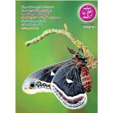 نسخه الکترونیک مجله اطلاعات هفتگی شماره 3375
