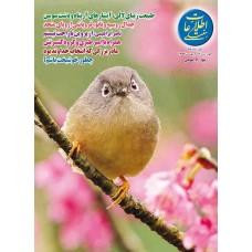 نسخه الکترونیک مجله اطلاعات هفتگی شماره 3602