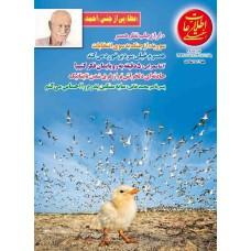 نسخه الکترونیک مجله اطلاعات هفتگی شماره 3606
