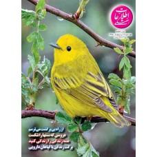 نسخه الکترونیک مجله اطلاعات هفتگی شماره 3836