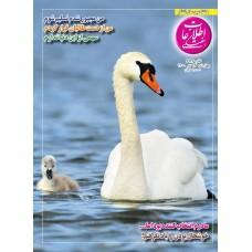 نسخه الکترونیک مجله اطلاعات هفتگی شماره 3936